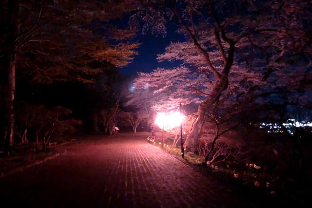 釣山公園4