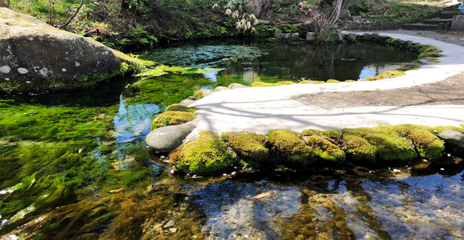 What is Nagashizu? Beautiful water springs from the bottom of a fish-shaped pond!