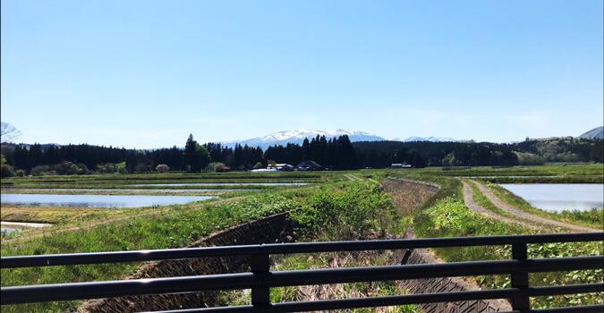 鎌倉時代から変わらぬ日本の原風景!一関市「骨寺村荘園遺跡」とは?
