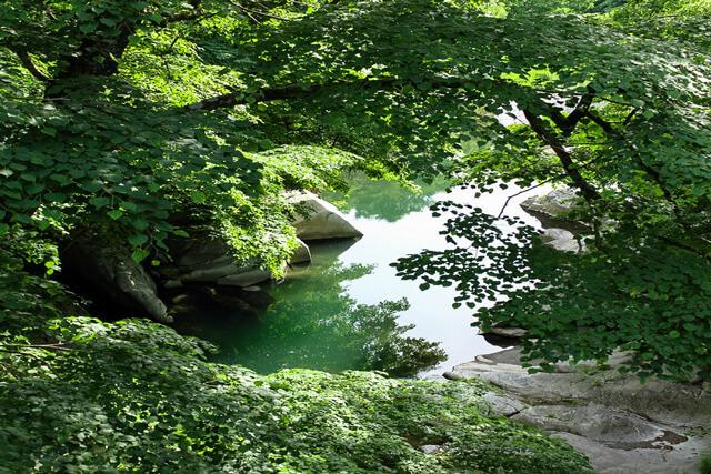 豊かな自然の中に悠然と佇むめがね橋!