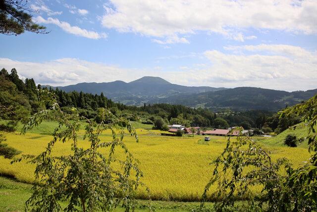 守り受け継がれてきた「北限の棚田」は日本の原風景を今に残す!